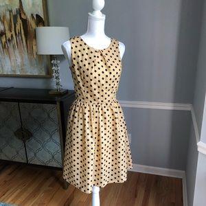 Pim + Larkin polka dot dress
